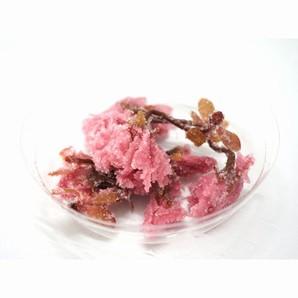 正栄食品 | 桜の花 塩漬け / 1kg