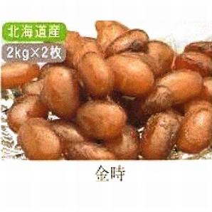 田中製餡 | かのこ豆 金時 / 2kg×2袋