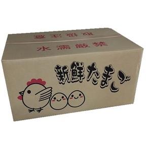 鶏卵 10kg 【価格変動あり】